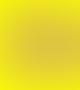dr. Radu Marius Tudor