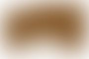 Examen pentru obtinerea titlului de specialist