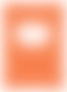 carte manualul merck