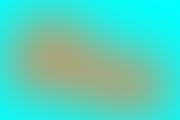 poza sigla studentul anului
