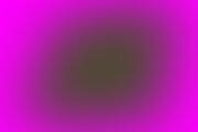 poza WPA 2013 Bucharest Congress