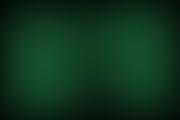 galamedica2013