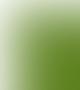 Conf. Univ. Dr. Serban Balanescu