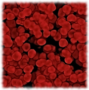 hemofilia-simptome-factori de risc
