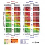 Grila Score limba romana risc inalt col in mg