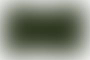 ochi-conjunctivita