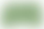 CNAS1