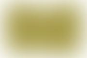 INTERVIU Prof. Dr . Vasile Astarastoae - Colegiul Medicilor din Romania are un nou cod deontologic