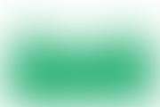 deschiderea conferintei SNMF