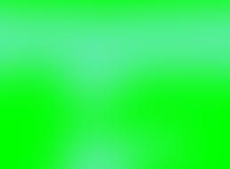 Colegiul Medicilor din Municipiul Bucuresti sustine pozitia SNMF