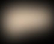 roho_logo